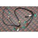 NEW Yamaha BLASTER wiring harness OEM REPLACEMENT 1997-2001 Vito's Performance 1