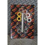 Vito's Yamaha Raptor 660 swingarm bearings rebuild kit sleeve seals 2001-2005